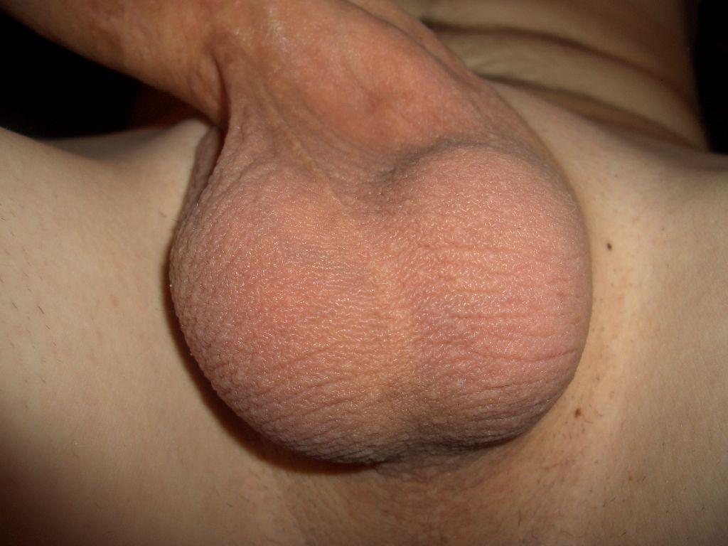 Testicles porn pics