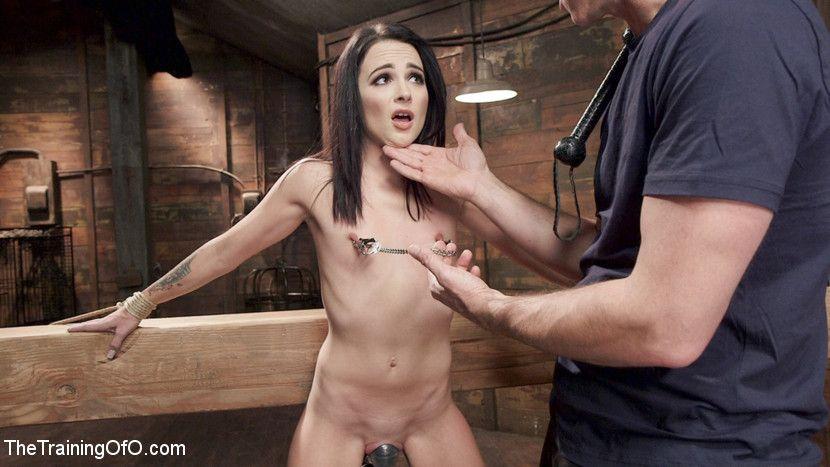 Red L. reccomend shaved slave
