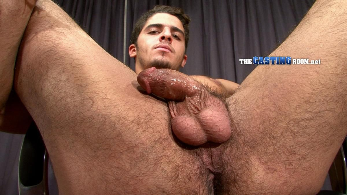 Hairy assholes suck dick cumshot