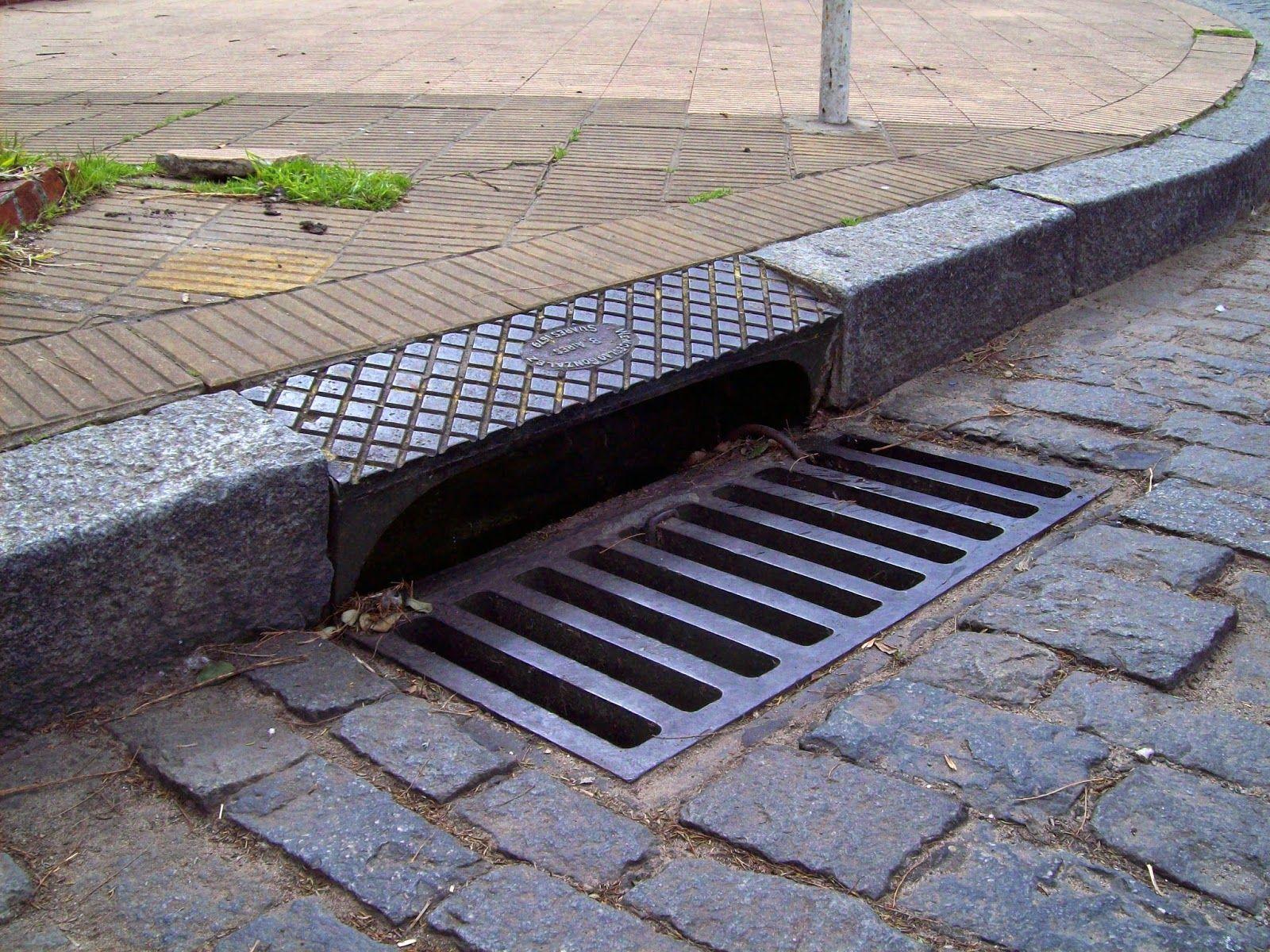 Catnip reccomend draining public road