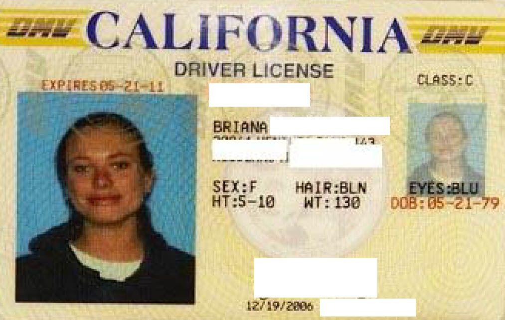 Maple reccomend license driver