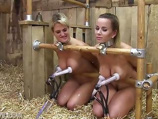 Red T. recommendet training amateur slave